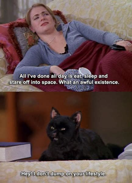 Sabrina Meme - unlike sabrina spellman melissa joan hart isn t into cats magical facts you didn t know