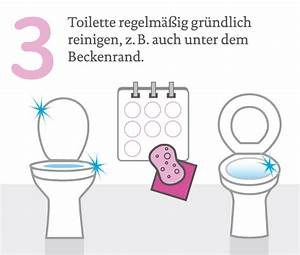Toilette Abfluss Reinigen : wohnung k che bad und wc richtig putzen ~ Sanjose-hotels-ca.com Haus und Dekorationen