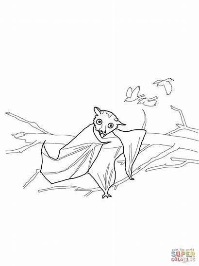 Coloring Stellaluna Xbox Controller Pages Luna Bird