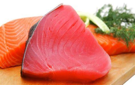 Kandungan Payudara Wanita Ikan Tuna Memiliki Banyak Manfaat Untuk Kesehatan