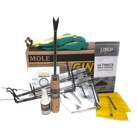 cinch mole traps cinch traps 2 1 4 in medium mole trap deluxe kit mmd 17 2206