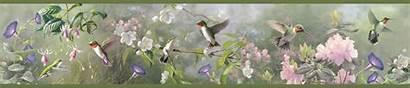Border Hummingbird Hummingbirds Borders Walls Wall Paper