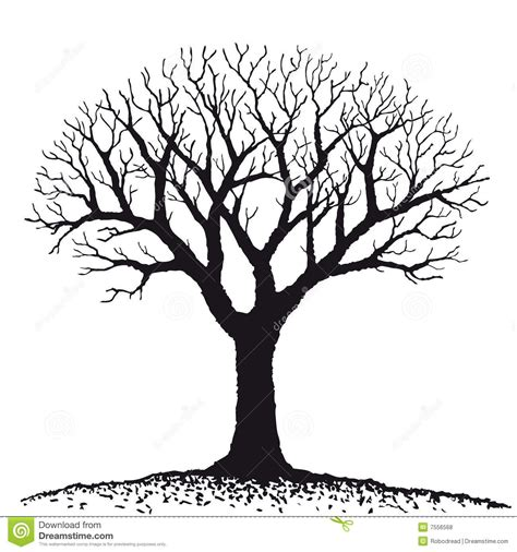 dry tree clipart clipground