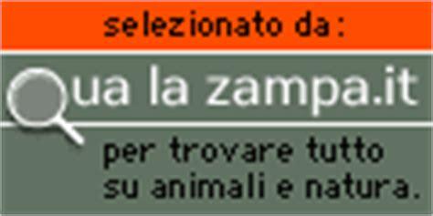 Mammifero Volante by Il Pipistrello