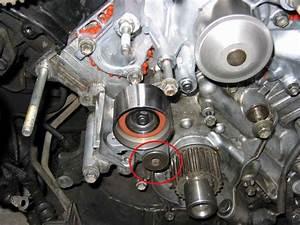 Timing Belt  U0026 Water Pump Replacement For Lexus Ls400 Ls430 Ls460 1990