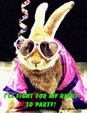 Tan Lucy Pez Holy Rabbit February
