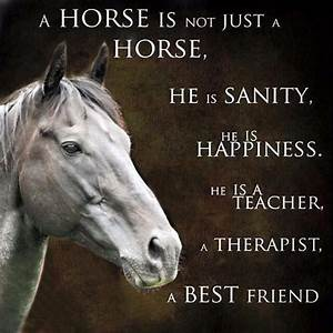 My horse is my therapy, when I can't even stand myself he ...