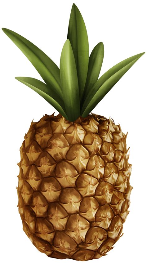 clipart photo pineapple clipart 47 cliparts