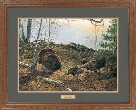 competition turkeys framed wildlife art print features beautiful artwork   matted