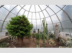 Cool Greenhouse Ideas for YearRound Use Interior