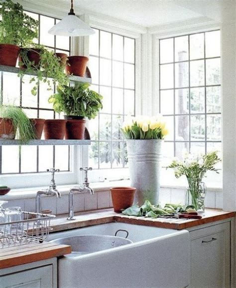 Plants For Bathroom Counter by Garden Windows For Kitchen Refreshing Part In The Kitchen