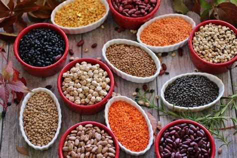 legumes cuisines all about legumes
