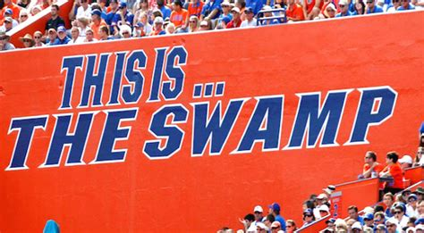 Florida Gators Pause Football Activities After 'Increase ...