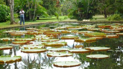 Botanischer Garten Berlin Nordend by Urlaub Perfekt Trauminsel Mauritius B Z Berlin