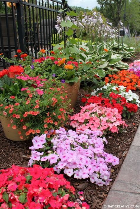 flower garden plants how to grow beautiful flowers oh my creative