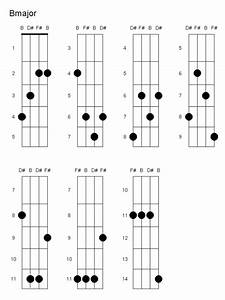 Chords - How To Play B Major  What Is The Finger Placement