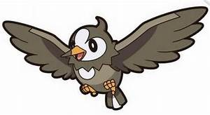 Pokemon Starly Evolution Images | Pokemon Images