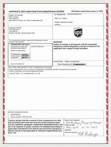 Ups shipper39s declaration iata for Ups dangerous goods