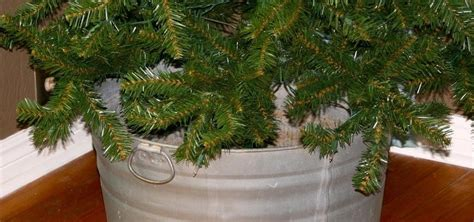taking care of christmas trees how to get a 5 tree and how to take care of it 171 ideas