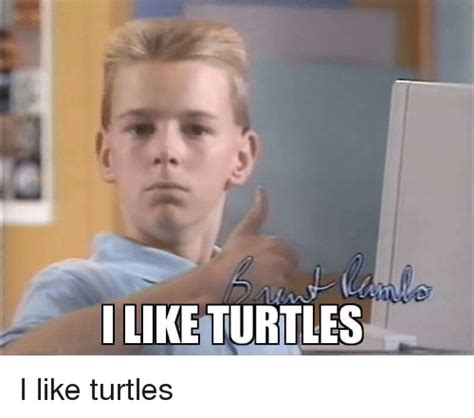 I Like Meme - i like turtles kid remix reptile gallery