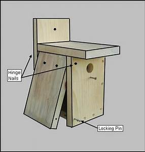 PDF Download Easy Birdhouse Plans Plans Woodworking How To