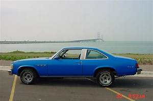 farmgirl75 1977 Buick Skylark Specs, Photos, Modification