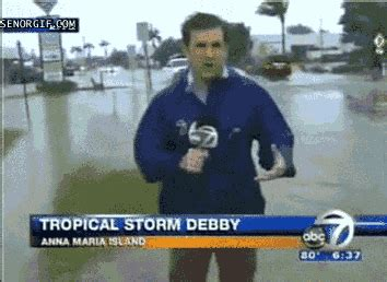 tropical storm gifs find share  giphy