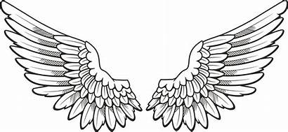 Wings Tattoo Angel Drawing Clip Clipart Wing