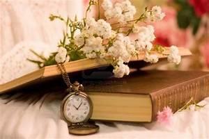 Watch books flowers | Flower show | Pinterest
