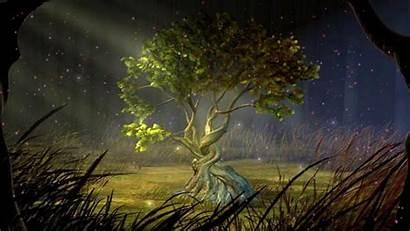 Earth Element Yoga Mystic Represented