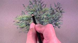 How to Draw a Tree with Colored Pencils - YouTube