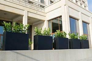 Pflanzen Kübel Beton : sichtschutz mit pflanzk beln im garten auf balkon und terrasse ~ Markanthonyermac.com Haus und Dekorationen