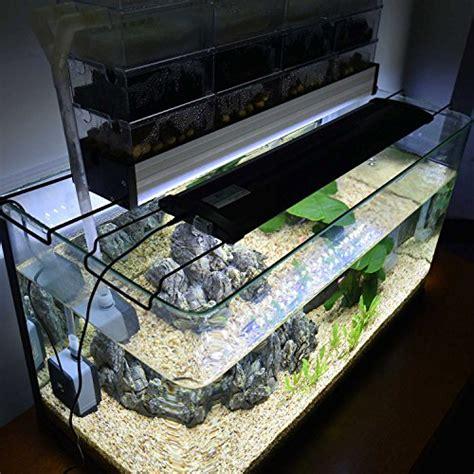eclairage led pour aquarium eau douce poisson eau douce pour aquarium aquariophilie