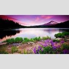 1080p Hd Wallpaper Nature Pixelstalknet