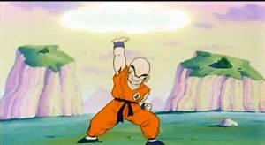 Goku and Tenshinhan's rivalry • Kanzenshuu
