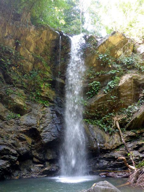 avocat waterfall destination trinidad  tobago tours