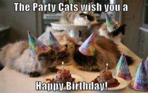 happy birthday memes birthday cards happy