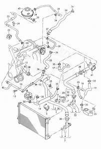 Buy Volkswagen 1c0121081 Coolant Hose With  Quick Relea