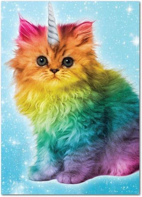 unicorn cat caticorn