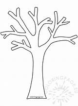 Tree Leaves Without Coloring Autumn Ağac sketch template