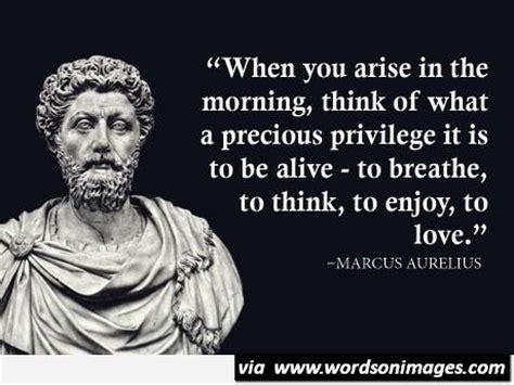 And while some football players have ruthless agents plotting their career, marcus is represented by his brothers dane rashford and dwaine maynard, who advise him on what different business decisions to make off the field. Marcus aurelius quote fridge magnet large - Collection Of ...