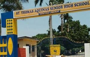 myghanalinks - ST. THOMAS AQUINAS SENIOR HIGH SCHOOL ...