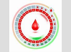 Trastornos en la menstruación causas, tipos y