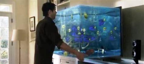 comment choisir aquarium acheter un aquarium comment choisir jardingue