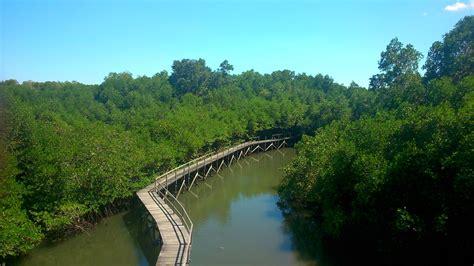 create happiness    obyek wisata hutan