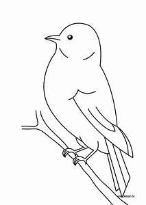 Dessin De Plume Facile : 118 dessins de coloriage oiseau imprimer ~ Melissatoandfro.com Idées de Décoration