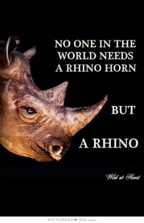 Rhinoceros Movie Quotes