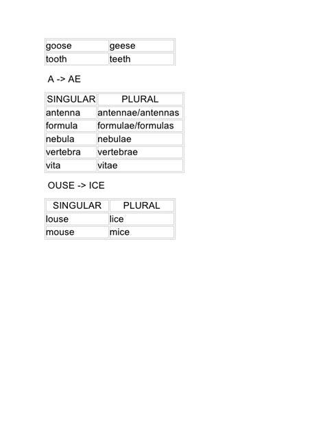 bureau plural irregular plural nouns list
