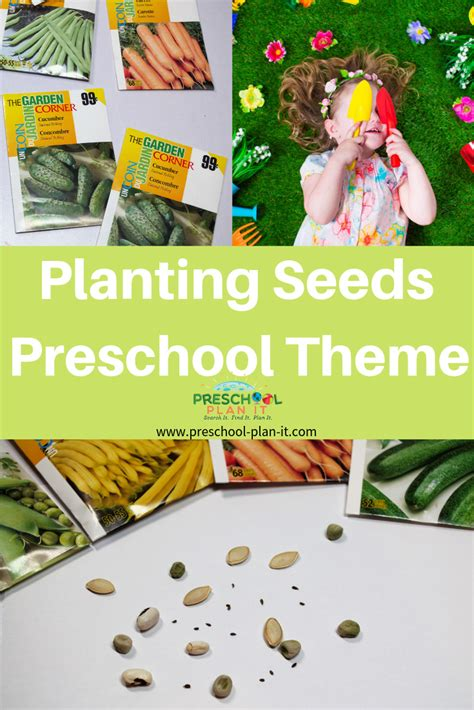 planting seeds theme for preschool 762 | planting seeds