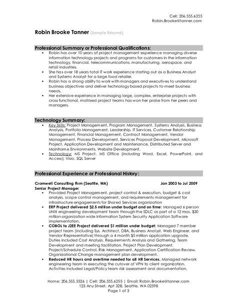 professional resume summary  samplebusinessresume